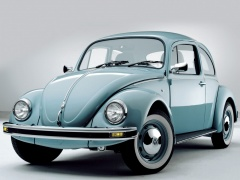 Beetle photo #17903