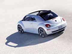 New Beetle Ragster photo #18914
