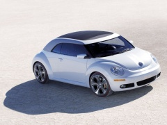 New Beetle Ragster photo #18915