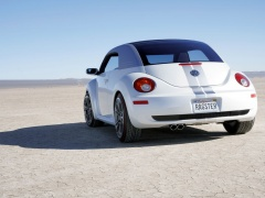 New Beetle Ragster photo #18916
