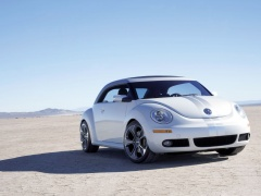 New Beetle Ragster photo #18917