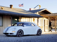 New Beetle Ragster photo #18921