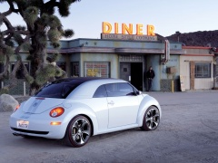 New Beetle Ragster photo #18923