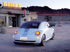New Beetle Ragster photo #18925