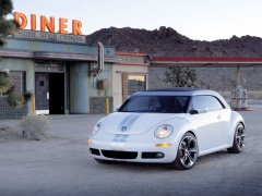 New Beetle Ragster photo #18926