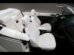 New Beetle Convertible Triple White photo #42277