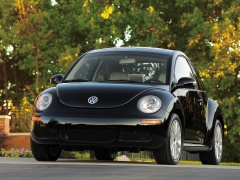 New Beetle photo #49979