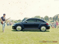 Beetle Fender Edition photo #92576