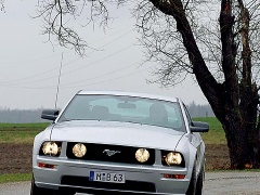 Ford Mustang photo #30639