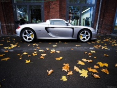 Porsche Carrera GT photo #50077