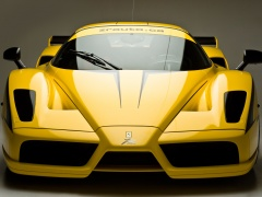 edo competition ferrari enzo xx evolution pic #68219
