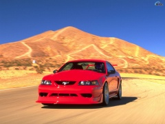 ford mustang cobra r pic #105399