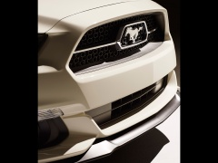 Mustang GT 50 Year Limited Edition photo #117275