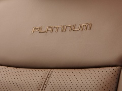 ford super duty platinum pic #121824