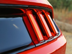 Mustang EcoBoost photo #129755