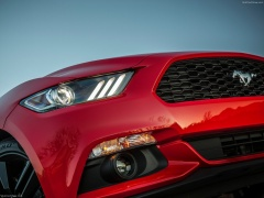 Mustang EcoBoost photo #129757