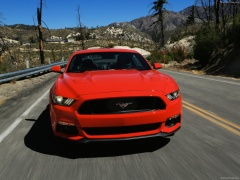 Mustang EcoBoost photo #129769