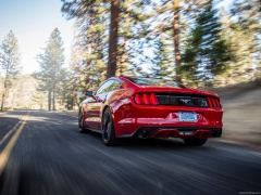 ford mustang ecoboost pic #129779