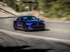 Mustang EcoBoost photo #129791