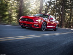 Mustang EcoBoost photo #129802