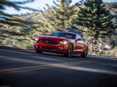 Mustang EcoBoost photo #129805