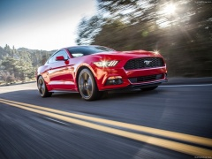 Mustang EcoBoost photo #129807