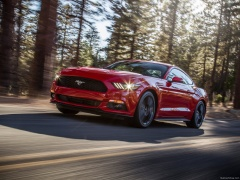 Mustang EcoBoost photo #129808