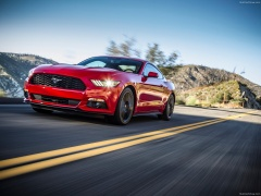 Mustang EcoBoost photo #129809