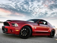 Mustang Shelby GT500 Super Snake photo #131137