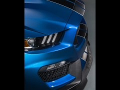 Mustang Shelby GT350R photo #135653