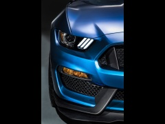 Mustang Shelby GT350R photo #135654