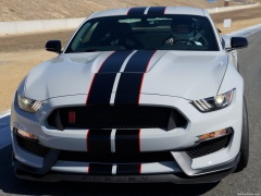 ford mustang shelby gt350r pic #149183