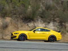 ford mustang shelby gt350r pic #149190