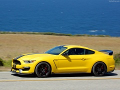 Mustang Shelby GT350R photo #149191