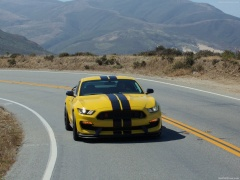 Mustang Shelby GT350R photo #149192
