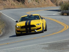 ford mustang shelby gt350r pic #149195