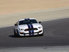 ford mustang shelby gt350r pic #149197