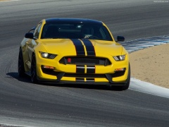 ford mustang shelby gt350r pic #149199