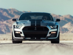 ford mustang shelby gt500 pic #192972