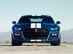 ford mustang shelby gt500 pic #192973
