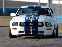 Mustang GT photo #21439