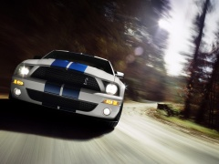 ford mustang shelby pic #30827