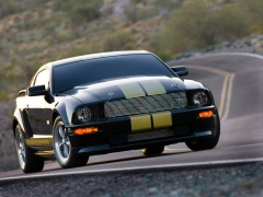 ford mustang shelby pic #33589