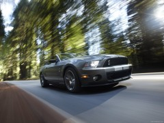 ford mustang shelby gt500 convertible pic #60507