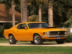 Ford Mustang Boss 429 pic