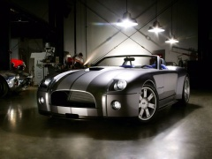 Shelby Cobra photo #7479