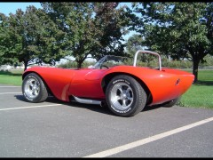cheetah roadster pic #54613