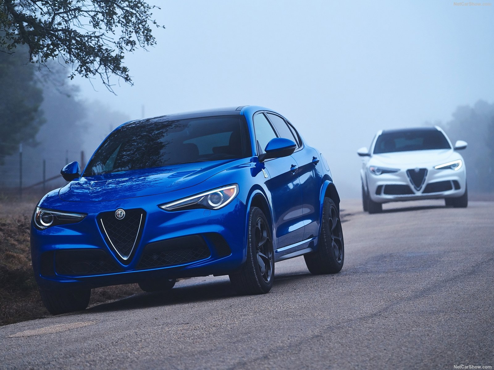 Alfa Romeo Stelvio photo 188052