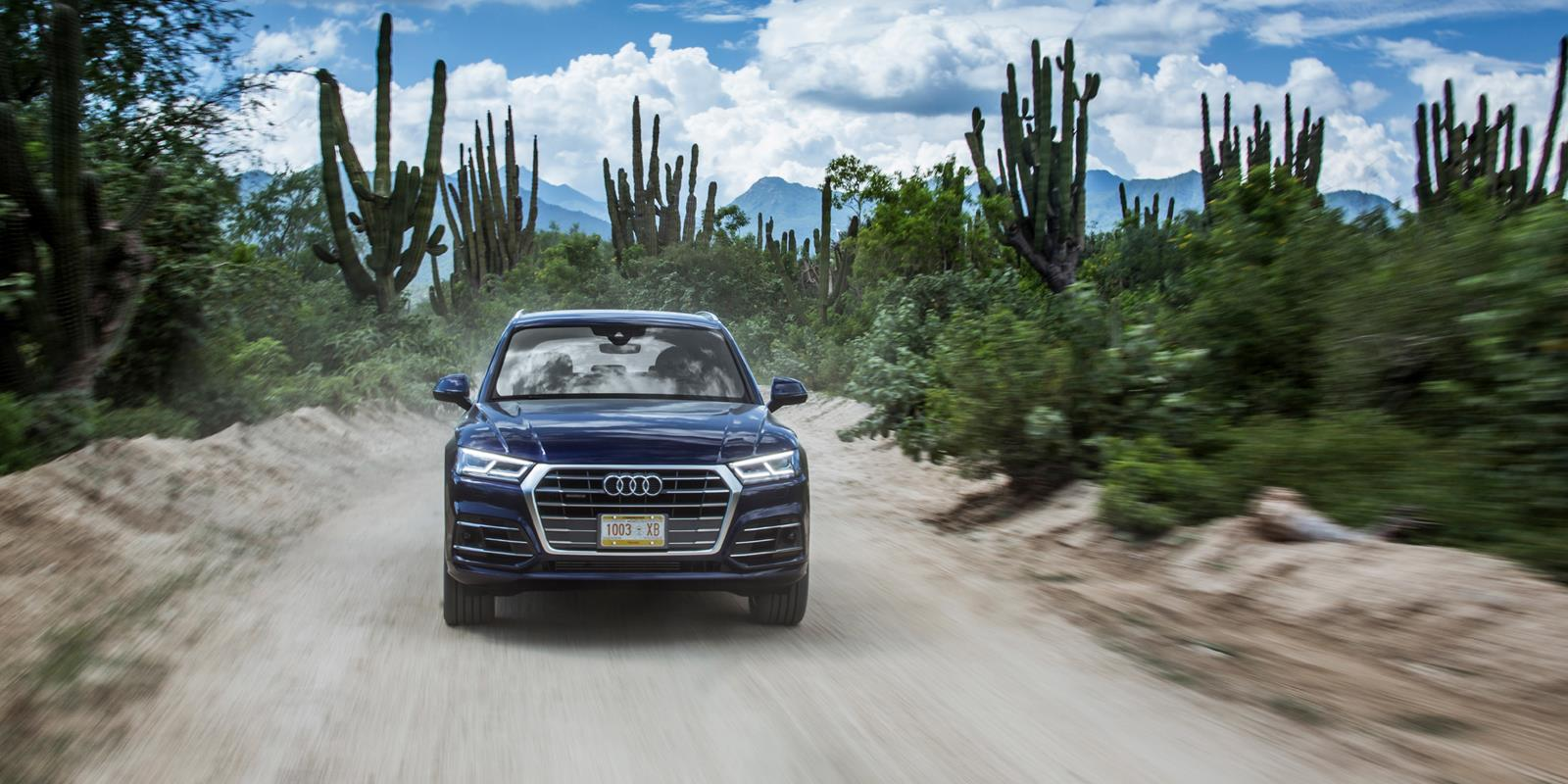 Audi Q5 photo 171925