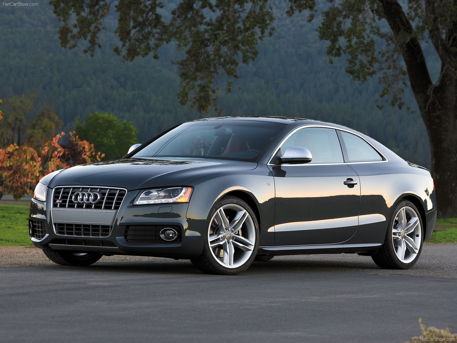 Audi S5 Picture 57956 Audi Photo Gallery Carsbase Com